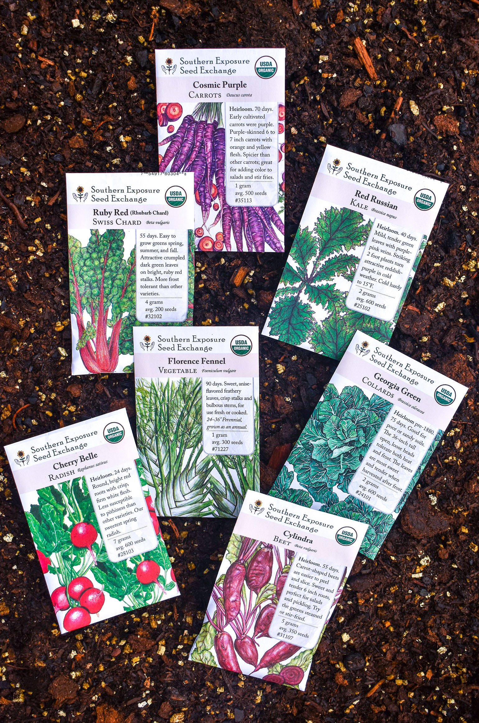 Planting a Fall Garden- Vegetable Garden Seeds