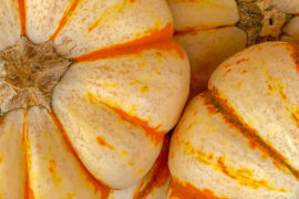 Striped Pumpkins- Weekend reading